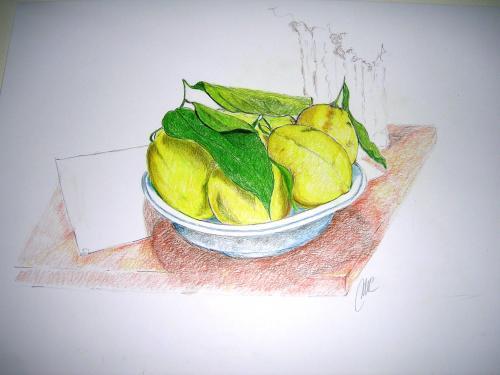 Limoni Disegno: Favole E… Realtà, Notturnosenzaluna